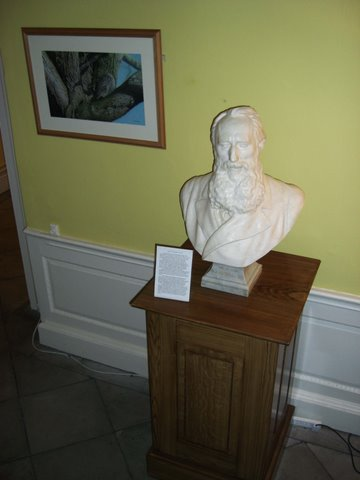 Mundella Bust in situ